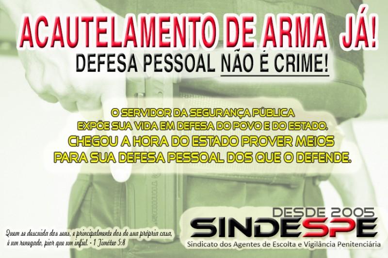 Sindespe desde 2011 em franca campanha em prol do acautelamento de arma para o AEVP