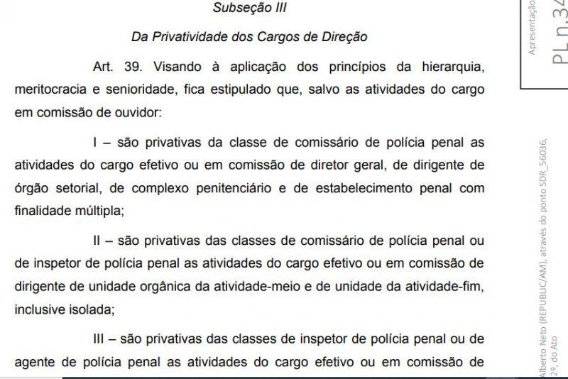 estrutura policia penal-4