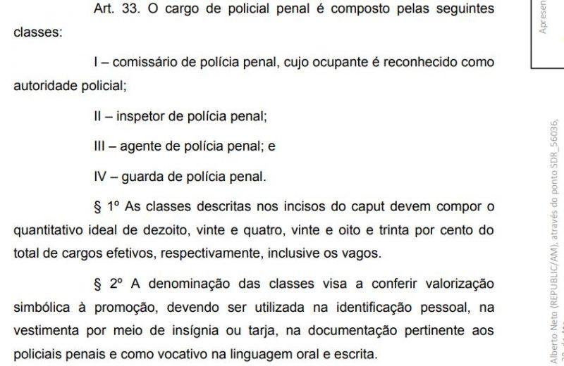 estrutyra policia pena-1