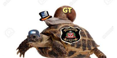 tartaruga GT